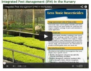 IPM videos