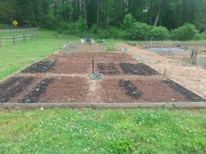 Soil From a Community Garden in Woodstock.