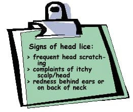 Head lice signs