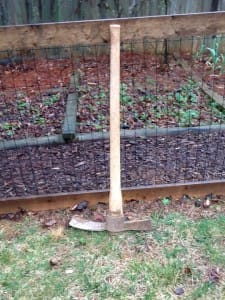 An old fashion mattock may be your only tool for some modified rotation in your community garden plots.