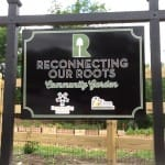Reconnecting Our Roots Garden