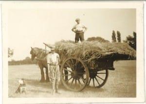Horticulture in 1935