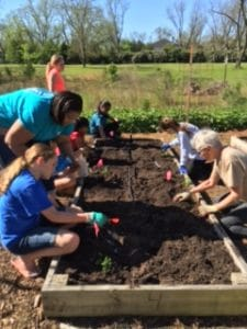 Food for a Thousand - A Garden of Community